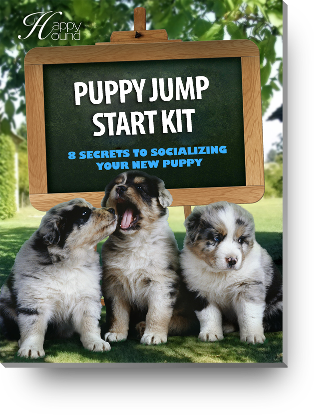 Puppy Jump Start Kit E-Book - Happy Hound