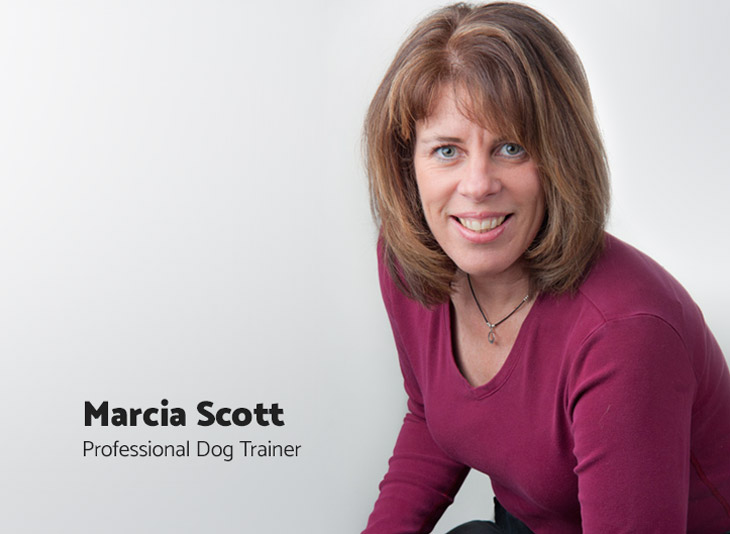 Marcia Scott, Professional Dog Trainer and Breeder, Happy Hound