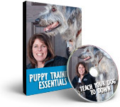 Happy Hound Training Videos - Teach Your Dog to Down