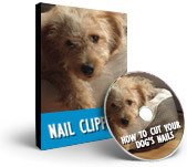 Happy Hound Training Videos - Nail Clipping